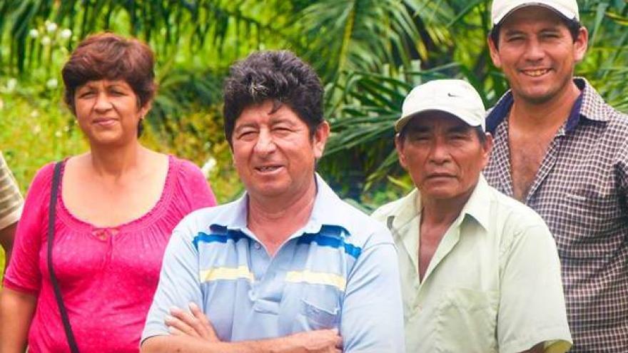 JUNPALMA PERÚ: MEJORANDO LA ENERGÍA DEL PAÍS DESDE LA SELVA PERUANA