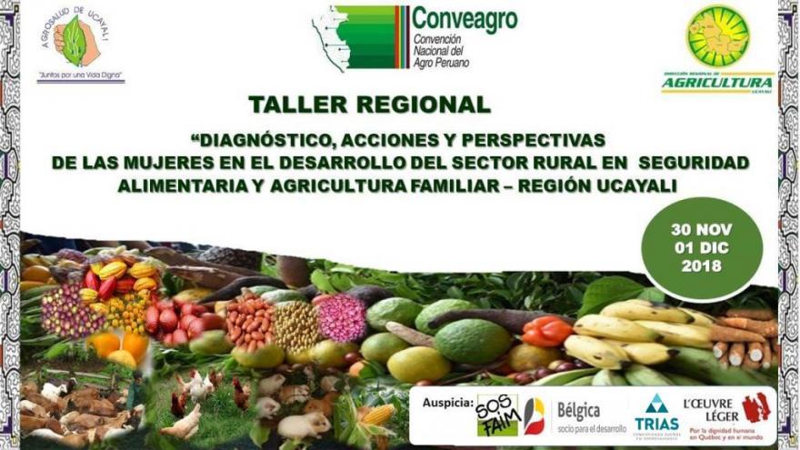 TALLER REGIONAL EN UCAYALI ESTE 30 Y 01 DE DICIEMBRE