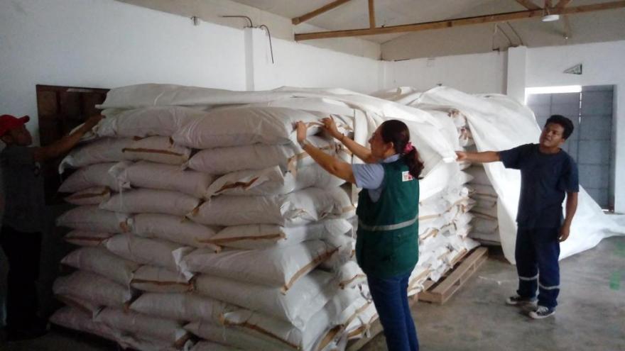 UCAYALI: CERTIFICAN MÁS DE 20 TONELADAS DE SEMILLA FORRAJERA PARA EXPORTACIÓN A LA INDIA