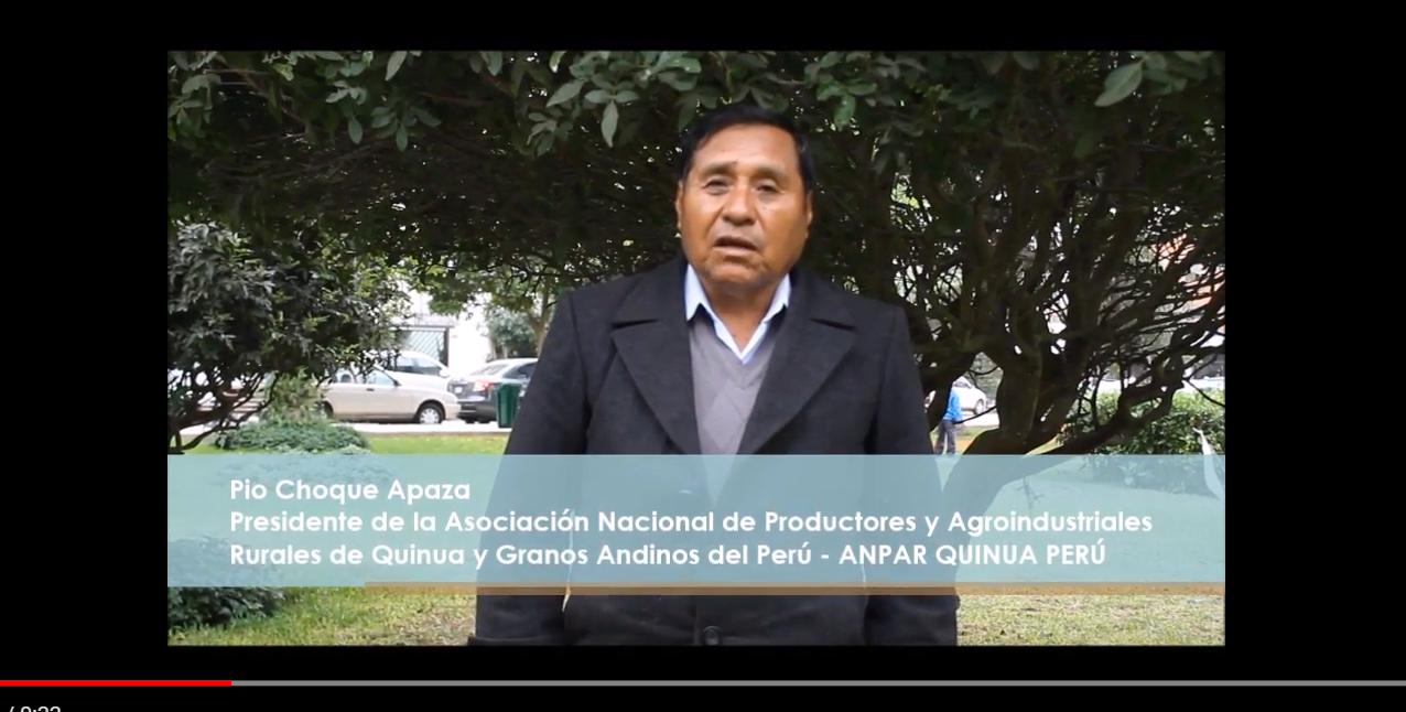 DIA NACIONAL DE GRANOS ANDINOS